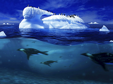 Iceberg with penguins and penguins under water, Antarctic Peninsula, Antarctica