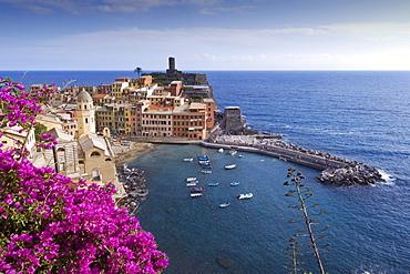 View to Vernazza, bougainvillea in the foreground, Vernazza, Cinque Terre, La Spezia, Liguria, Italian Riviera, Italy, Europe