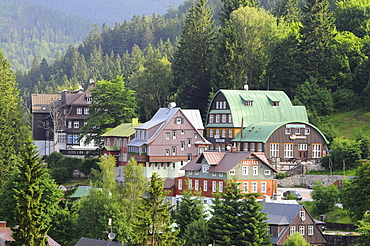 Houses of the town Spindlermuehle in front of conifers, Bohemian mountains, east-bohemian, Czech Republic, Europe