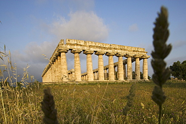 Temple of Hera, Heraion, UNESCO world heritage site, Paestum, Cilento, Campania, Italy