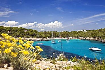 Sailing yachts in the bay Cala MondragÛ in the sunlight, beach of CalÛ d'en Garrot, natural park of MondragÛ, Mallorca, Balearic Islands, Mediterranean Sea, Spain, Europe