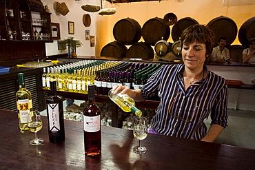 Wine tasting room, Bodega La Geria, La Geria, Lanzarote, Canary Islands, Spain, Europe