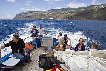 Aboard a whale watching boat Ribeira Brava, Near Calheta, Madeira, Portugal