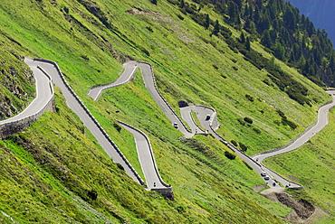 Serpentine, Stelvio National Park, Trentino-Alto Adige/South Tyrol, Italy