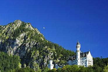 Neuschwanstein castle, Hohenschwangau, Allgaeu, Swabia, Bavaria, Germany