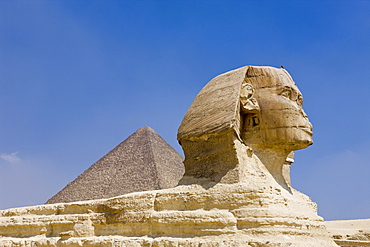 Great Sphinx of Giza against Cheops Pyramid, Egypt, Cairo