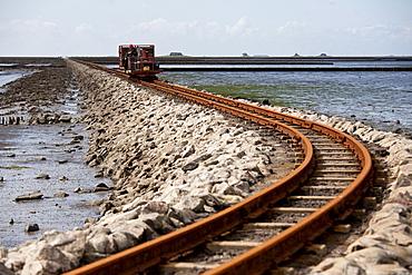 Narrow-gauge railway Feldbahn to Nordstrandischmoor, Beltringharder Koog, Luettmoorsiel, Nordstrand, Schleswig-Holstein, Germany