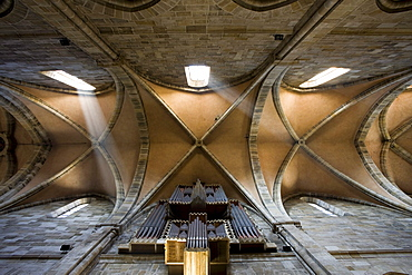 Vaulted ceiling in Bamberg Cathedral, cathedral of St. Peter and St. Georg, Bamberg, Franken, Bavaria, Germany, Europe