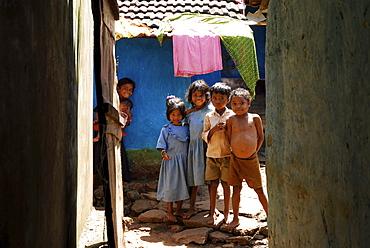Children in Mali village, Tribal region in Koraput district in southern Orissa, India, Asia