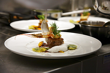 Fish and meat dish, restaurant Epoca, Hotel Waldhaus, Flims, Canton Grisons, Switzerland