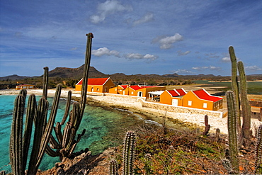 West Indies, Bonaire, Boca Slagbaai, Washington National Park