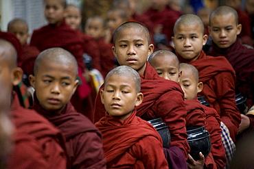 Buddhist monks waiting to get their food at Mahagandhayon monastary in Amarapura near Mandalay, Myanmar, Burma