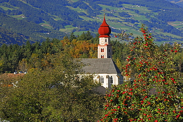 church above valley of Eisack with red apples at apple tree, Dolomites, South Tyrol, Italy
