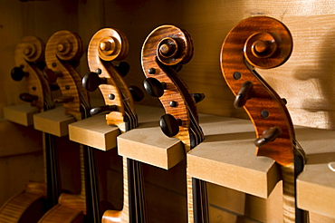 Close up of Violin Scrolls, Workshop of Bruce Carlson, Violin Makers, Cremona, Lombardy, Italy