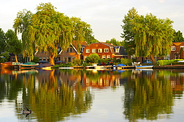 Houses at the riverbank of the river Amstel in the light of the evening sun, Uithoorn, Netherlands, Europe