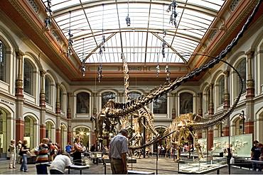 Museum fuer Naturkunde, Berlin Museum of Natural History