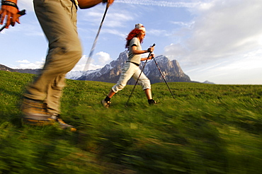 A woman and a man Nordic Walking in a mountain scenery, Sciliar, South Tyrol, Italy, Europe