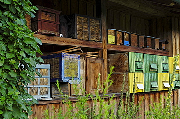 Bee hives in the South Tyrolean local history museum at Dietenheim, Puster Valley, South Tyrol, Italy