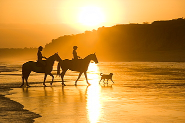 Two horsewomen with a dog at beach, Algarve, Portugal