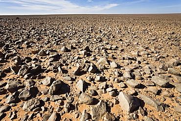 Stony Desert, Black Desert, Libya, Sahara, Africa