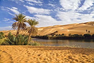 Mandara Lakes in the dunes of Ubari, oasis Um el Ma, libyan desert, Libya, Sahara, North Africa