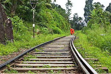 Buddhist monks walking along the track of Sri Lankas most beautiful railway line trough the highland, Ella, Highland, Sri Lanka, Asia