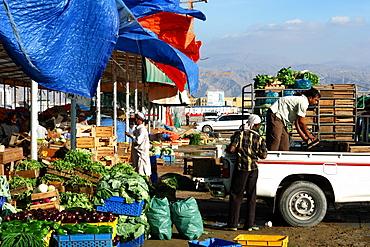 Market, Ras Al Khaimah, RAK, United Arab Emirates, UAE