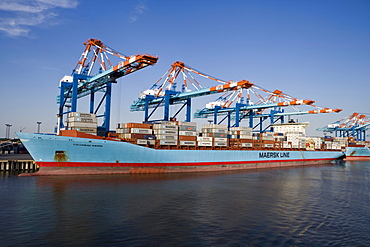 Container Ship Columbine Maersk, Bremerhaven, Bremen, Germany, Europe