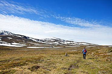 Hiker in the mountains, Lapland, northern Sweden, Sweden