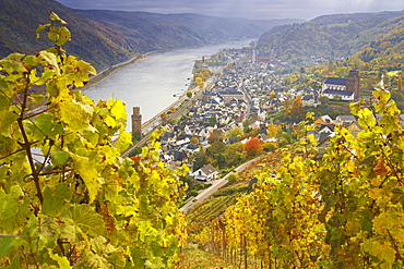 View from the Guenderode House at Oberwesel, Cultural Heritage of the World: Oberes Mittelrheintal (since 2002), Mittelrhein, Rhineland-Palatinate, Germany, Europe