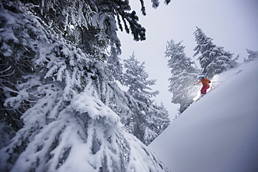 Downhill skiing in deep snow, Grouse Mountain, British Columbia, Canada