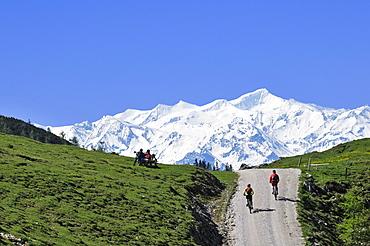 People on mountain bikes at Eggenalmkogel, Hohe Tauern in the background, Reit im Winkl, Bavaria, Germany, Europe