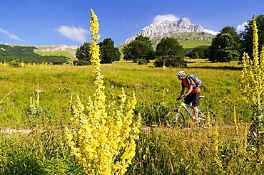 Mountain biker in idyllic landscape at Corno Grande, Gran Sasso National Park, Abruzzi, Italy, Europe