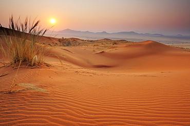 Sunrise over red sand dunes with Tiras mountains in background, Namib Rand Nature Reserve, Namib desert, Namib, Namibia