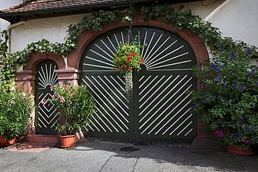 Gate of a vinery, Bickensohl, Kaiserstuhl, Breisgau, Black Forest, Baden-Wuerttemberg, Germany