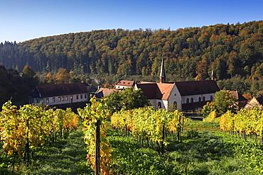Bronnbach Cistercian monastery, Tauber valley, Romantic Road, Baden-Wurttemberg, Germany