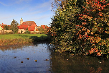 View from the pond to the cathedral, Dinelsbuehl, Romantic Road, Franconia, Bavaria, Germany