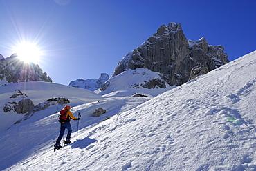 Female backcountry skier ascenting, Griesner Kar, Wilder Kaiser, Kaiser range, Tyrol, Austria
