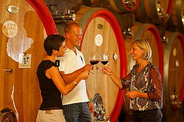 Clink glasses, Winetasting Bardolino, Zeni Vineyard, Bardolino, Veneto, Italy