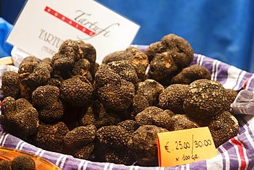 Black Truffles, Truffle Fair, Alba, Langhe, Piedmont, Italy