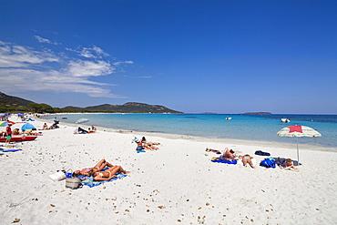 Palombaggia beach, south-east coast, Corsica, France, Europe