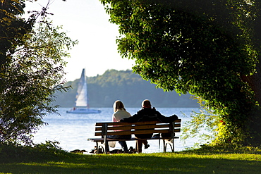 Benches on the west side of the Fraueninsel, Chiemsee, Chiemgau, Upper Bavaria, Bavaria, Germany