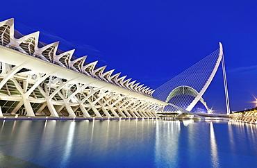 The Science Museum, Museu de les Ciencies PrÃŒncipe Felipe and bridge, Puente de l'Assut de l'Or, City of Arts and Sciences, Cuidad de las Artes y las Ciencias, Santiago Calatrava (architect), Valencia, Spain