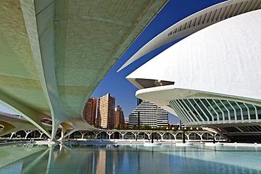 Monteolivete Bridge and the Palau de les Arts, City of Arts and Sciences, Cuidad de las Artes y las Ciencias, Santiago Calatrava (architect), Valencia, Spain