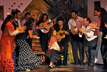 Girl dancing flamenco, flamenco, Los Gallos, Sevilla, Province Sevilla, Andalusia, Spain, Mediterranean Countries