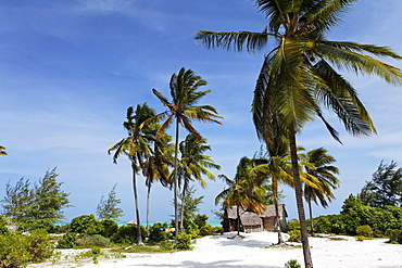 Strand, Dhau Inn Hotel, Paje, Zanzibar, Tanzania, Africa