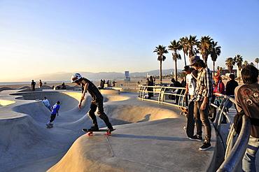 Skateboarders at Venice Beach in the evening, Santa Monica, Los Angeles, Los Angeles, California, USA, America