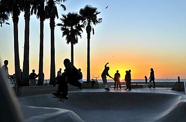 Skateboarders at Venice Beach at sunset, Santa Monica, Los Angeles, Los Angeles, California, USA, America