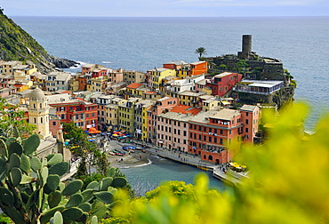 View of colourful houses and harbour, Vernazza, Cinque Terre, La Spezia, Liguria, Italy, Europe