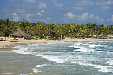Jamaica Long bay at east coast after Hurricane Dean destroyd palm trees and beach bars and houses